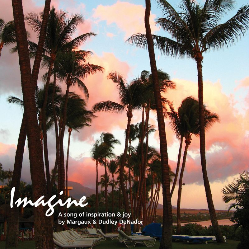 Imagine Cvr Hyatt Maui_012514